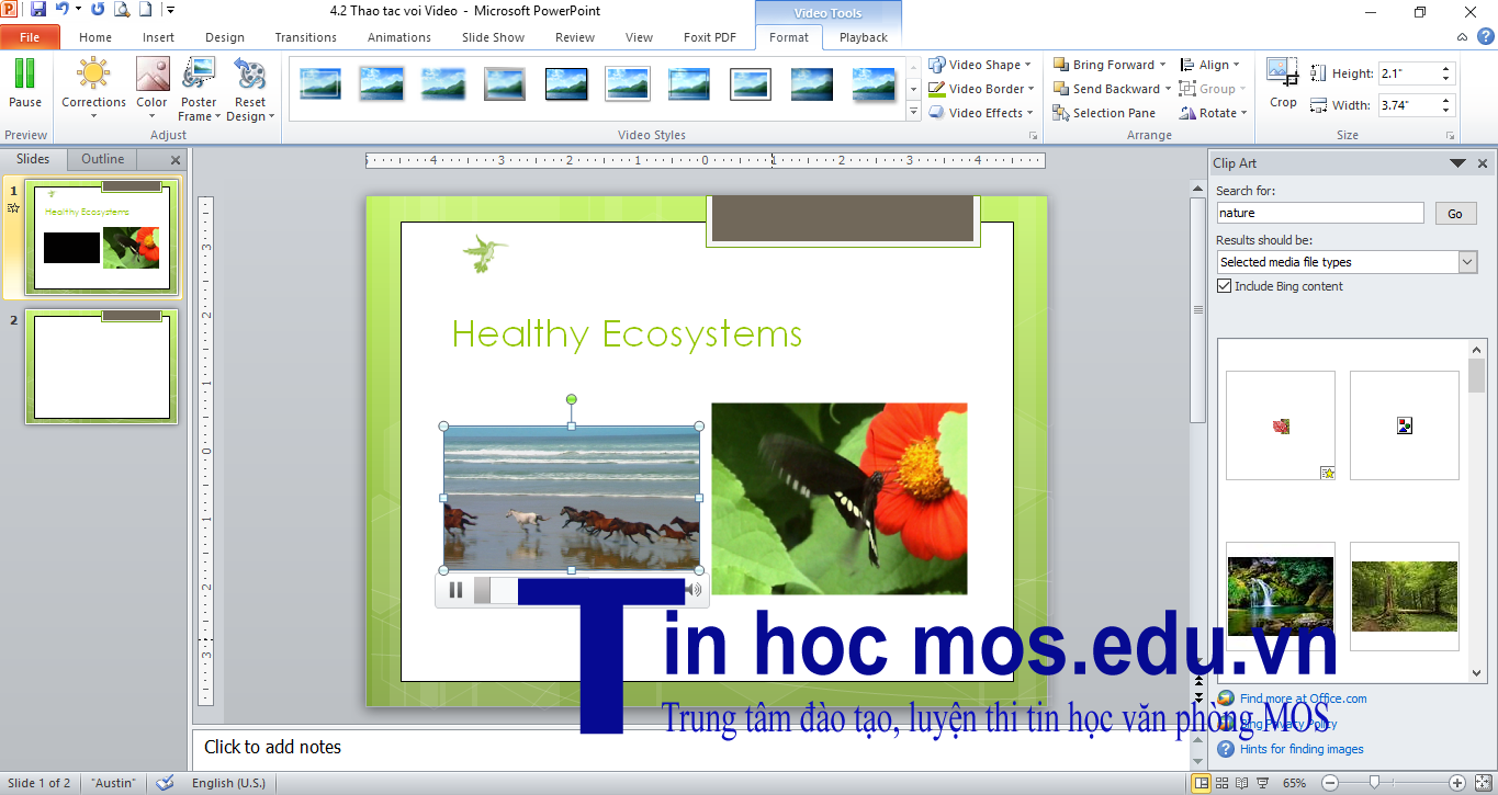chen video trong powerpoint