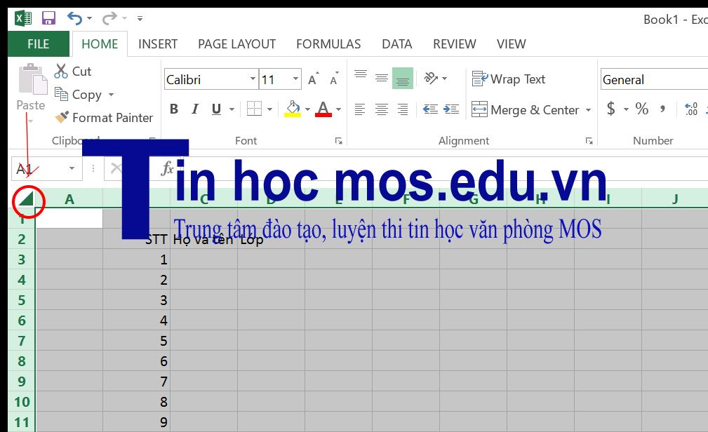 meo dung excel 1