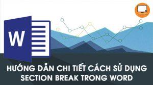 Hướng dẫn chi tiết cách sử dụng Section Break trong Word